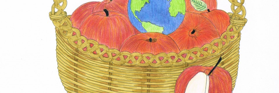 ED 2012 Apple Basket colored pencil
